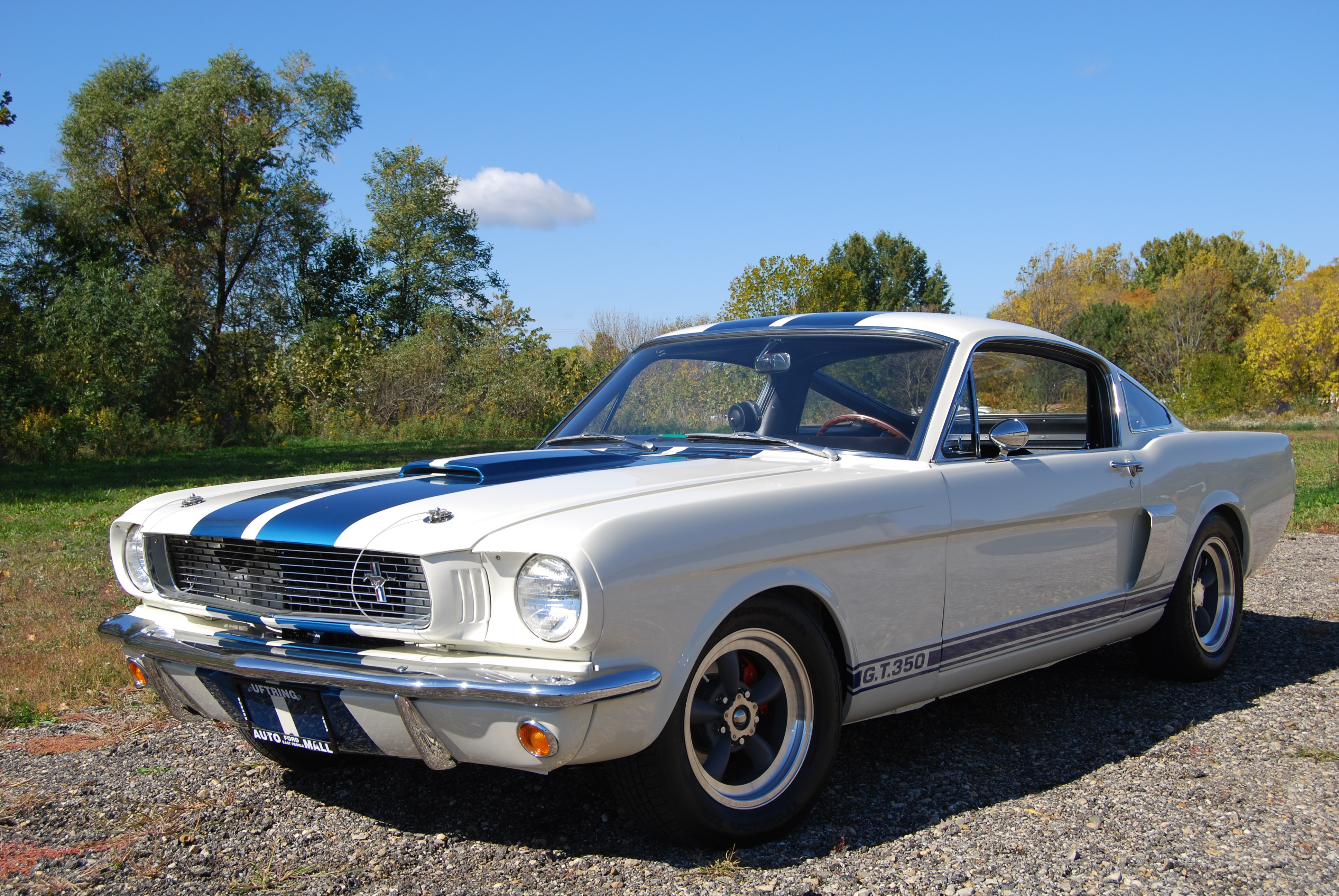 1966 Ford Mustang Shelby Clone